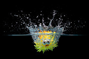 Simon Bratt Photography - Toy fish splashing into...