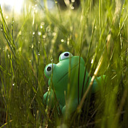 Dew Drop Prints - Toy Frog In The Wet Grass Print by Bernard Jaubert