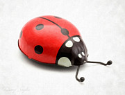 Single Object Photos - Toy Ladybug by Danny Smythe