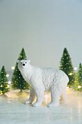 Sandra Cunningham - Toy polar bear with little trees and lights