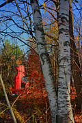 Emily Stauring - Toyota Tree