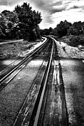 South Carolina Framed Prints - Tracks Across the Line Black and White Framed Print by Kelly Hazel