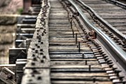 Railroad Spikes Art - Tracks Ties Spikes by M Dale