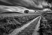 Monochrome Prints - Tracks to Corgarff Castle Print by David Bowman