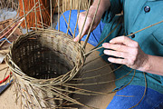 Basket Maker Framed Prints - Traditioinal Basket Maker Framed Print by Paul Felix