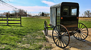 Amish Family Photos - Traditional Amish Buggy by Lee Dos Santos