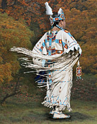 Lakota People Framed Prints - Traditional Woman Native American Dancer Framed Print by Greg Sigrist