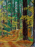 Woods Pastels Prints - Trail At Wason Pond Print by Sean Connolly
