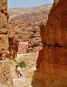 Jordan Trail Framed Prints - Trail to the Monastery in Petra-Jordan Framed Print by Ruth Hager