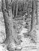 Den Drawings - Trailhead to the Wolf Den  triptych I by Jim Hubbard