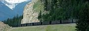 Gail Matthews - Train heading to Jasper