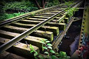Railroad Ties Posters - Train - Railroad Trestle Poster by Paul Ward