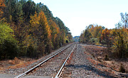 Cynthia Guinn - Train Tracks