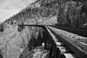 Kevin Bone - Train Trestle 1