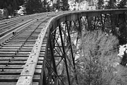 Kevin Bone - Train Trestle 3