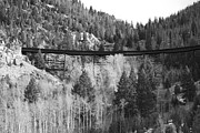 Kevin Bone - Train Trestle 4