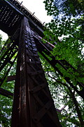 Wood Bridges Photos - Train Trestle in the Woods by Michelle Calkins