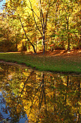 Kim Hojnacki - Tranquil Autumn