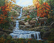 Autumn Woods Painting Prints - Tranquil Deer Cove Print by Crista Forest