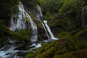 Falls Posters - Tranquil Forest Waterfall Poster by Mike Reid