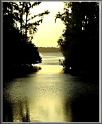 Jacksonville Digital Art Prints - Tranquil Jacksonville Florida Sunset Print by Danielle  Parent