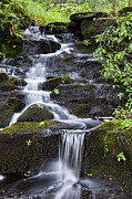 Ledge Photos - Tranquil Mountain Brook by Alan L Graham