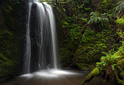 Waterfall Photo Prints - Tranquil Pool Print by Mike Reid