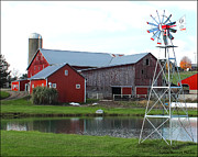 Amish Farms Photos - Tranquility Pond by Lydia Warner Miller