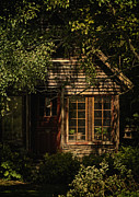 Shed Photo Prints - Tranquilizer Print by Odd Jeppesen