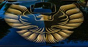 Trans Am Eagle Print by Paul Ward