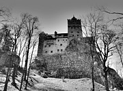 Romania Photo Originals - Transylvania - Dracula Castle by Sorin Ghencea