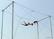 Flyers Prints - Trapeze School Print by Brian Wallace