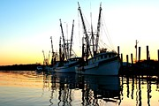 Trawler Metal Prints - Trawler Metal Print by Claudia Gay