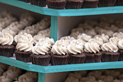 JPLDesigns - Trays of Cupcakes Closeup