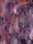 Purple Artwork Posters - Tree Abstract Poster by Rona Black