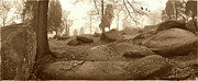 Tree And Steps At Devils Den - Gettysburg Print by Jan Faul