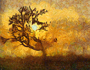 Brown Tones Digital Art Framed Prints - Tree at sunset - digital painting in van gogh style with warm orange and brown colors Framed Print by Matthias Hauser