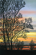 Tree Print Pastels Framed Prints - Tree at Sunset Framed Print by Sarah Dowson