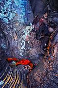Jenny Rainbow - Tree Bark. Natural Textures