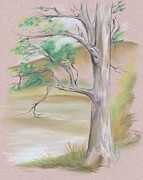 Branches Pastels Posters - Tree by a Mountain Lake Poster by MM Anderson