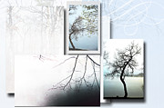 Mixed Media Nature Framed Prints - Tree Collage in the Mist Framed Print by Anahi DeCanio