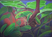 Tree Creature Pastels Prints - Tree Frog Print by Daniel Wend