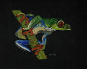 Linda Feinberg - Tree Frog