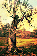 Gloomy Mixed Media Posters - Tree Poster by Gynt