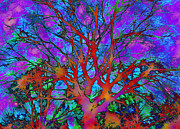 Linnea Tober Acrylic Prints - Tree of Ghosts3  Acrylic Print by Linnea Tober