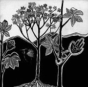 Puerto Rico Drawings - Tree of Life by Aurora Levins Morales