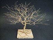 Wire Tree Sculptures - Tree Of Life Sculpture in Wire Art by Ken Phillips