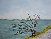 Aleezah Selinger - Tree on The Hudson River
