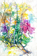 Rocky Mixed Media - Tree Poems by Patricia Allingham Carlson