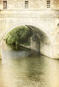 Pulteney Bridge Framed Prints - Tree Reflection Framed Print by Margie Hurwich